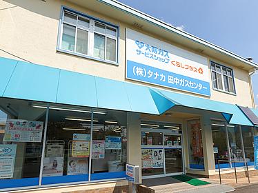 shop_7